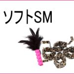 ソフトSM専用おもちゃ