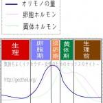 オリモノの量と周期