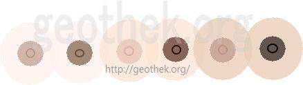 肌の色が白いのに乳首が黒い人の乳首のイラスト