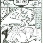 セックスの48手【2】恋のむつごと四十八手:其の22.横組(よこぐみ)