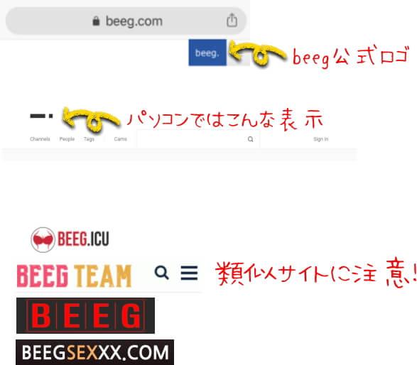 アダルト動画サイトbeegの類似サイト解説画像