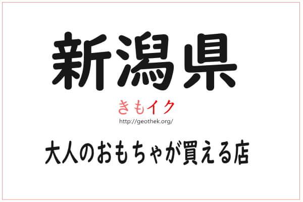 新潟県で女性が1人エッチ用の大人のおもちゃが買える店
