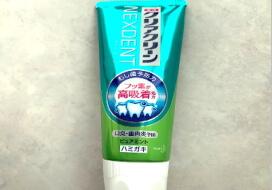 メンタムオナニーの代替え品歯磨き粉オナニー