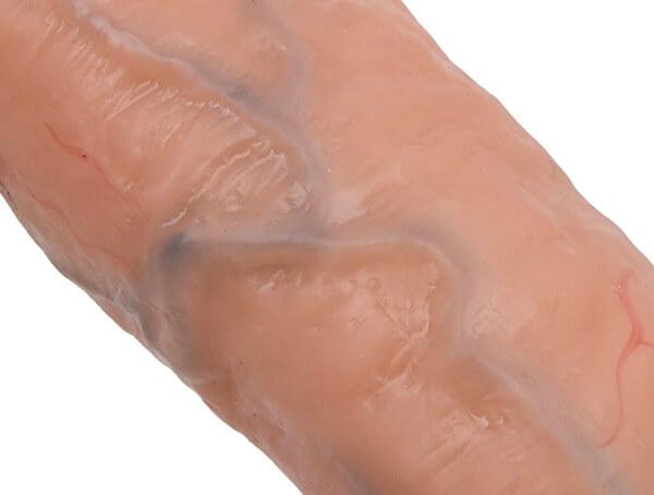 生チンディルドのリアルな血管のアップが像