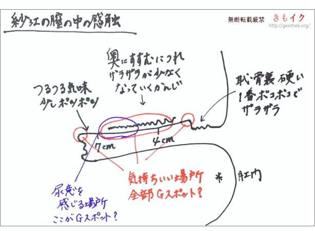 きもイク紗江のGスポット