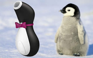 サティスファイヤーペンギンと可愛いペンギンとの比較画像