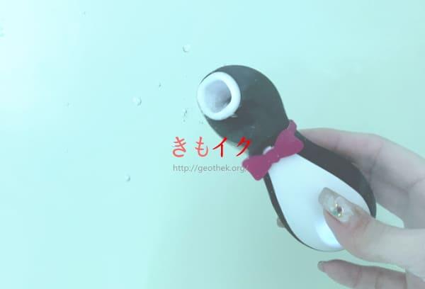 サティスファイヤーペンギンのお風呂の湯船の中の使用画像