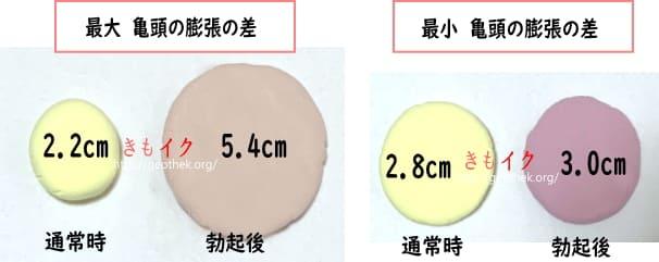 通常時と勃起後のペニスの膨張サイズの差 最大と最小