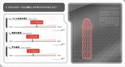 TENGA50万人データのペニス平均サイズ